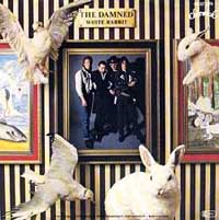 display image of DAMNED - White Rabbit
