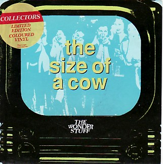 Size Of A Cow
