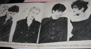 siouxsie and the banshees join hands signed