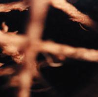 KILN, Twinewheel - Lost-Sides And Dusty-Gems 1994-2005
