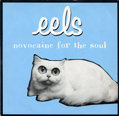 EELS, Novocaine For The Soul