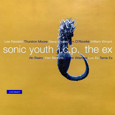 SONIC YOUTH / I.C.P. / THE EX, In The Fishtank 9