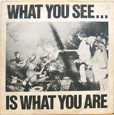 ALTERNATIVE TV / HERE AND NOW, What You See... Is What You Are