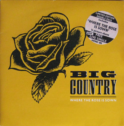 BIG COUNTRY, Where The Rose Is Sown