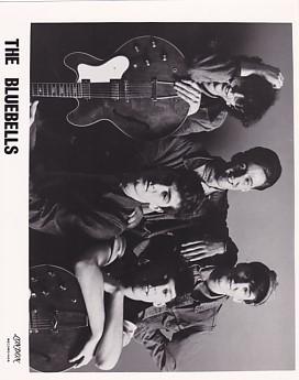 BLUEBELLS, 1982 Press Photo