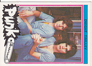 Rare 1977 Punk Bubblegum Card